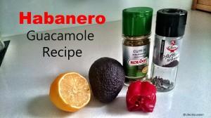 Habanero Guacamole Recipe Image